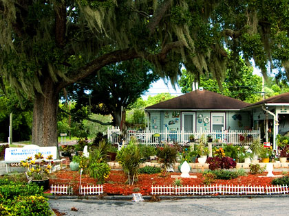 Picture old oaks draped in Spanish moss, brick-paved streets, small colorful cottages, and light shimmering on the Bay.